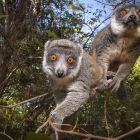 Die Hüter der Artenvielfalt