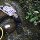 Ecuador – Lebendiger Wald
